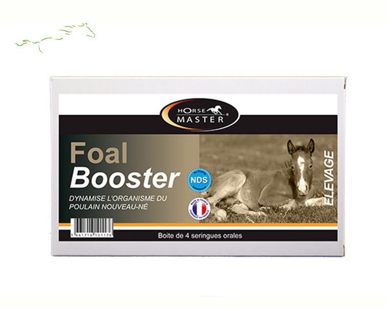 foal-booster-HORSE MASTER