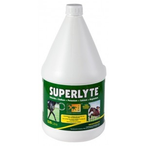 SUPERLYTE SYRUP 3.75 LITROS