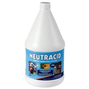 NEUTRACID 3.75 LITROS