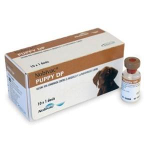 NOBIVAC PUPPY DP+DILUYEN 1D *