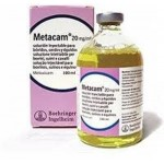METACAM 20MG/ML 100 ML INY. EQUINOS