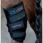 PROTECTOR CORVEJON HORSEWARE ICE-VIBE PAR