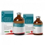 CORTEXONAVET 2MG/ML 50ML (NO RETARD)
