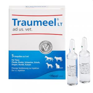 TRAUMEEL VET. 5 AMP 5 ML