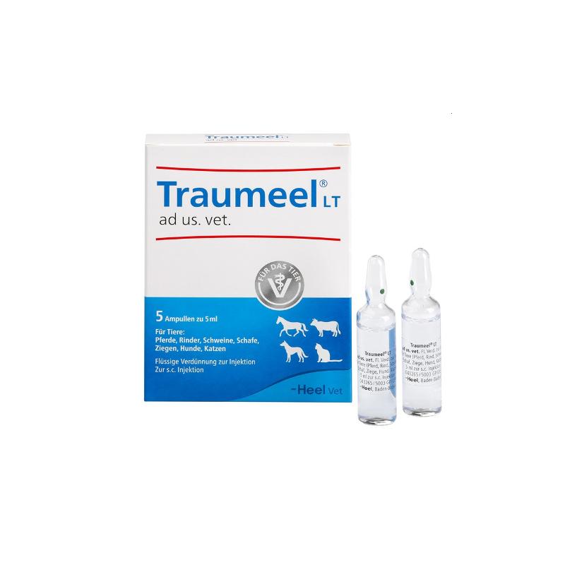 TRAUMEEL VET 5 AMP 5 ML