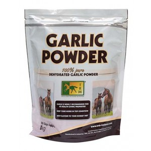 GARLIC POWDER 2.5KG