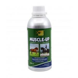 MUSCLE UP 450ML