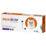 BRAVECTO 250 MG (2,8-6,25KG) SPOT ON GATO