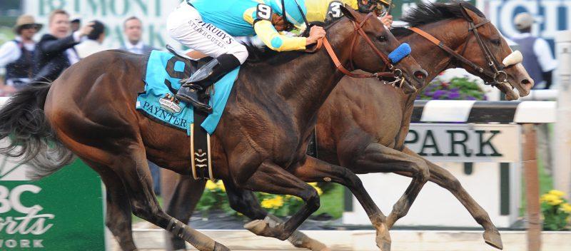 masa muscular caballo Equinvest TRM