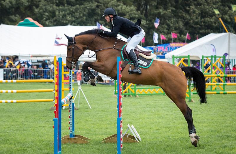 El estrés en el caballo de deporte