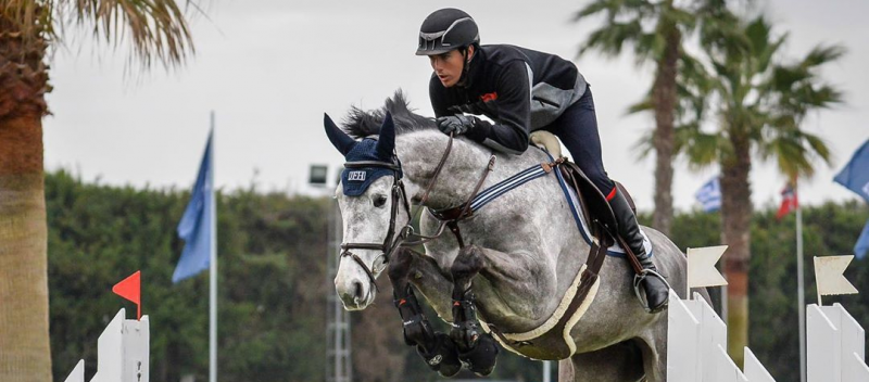 Rendimiento del caballos tras la estabulación