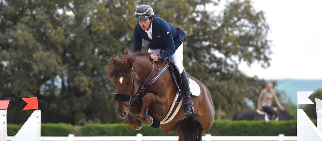 Rendimiento caballo en competición